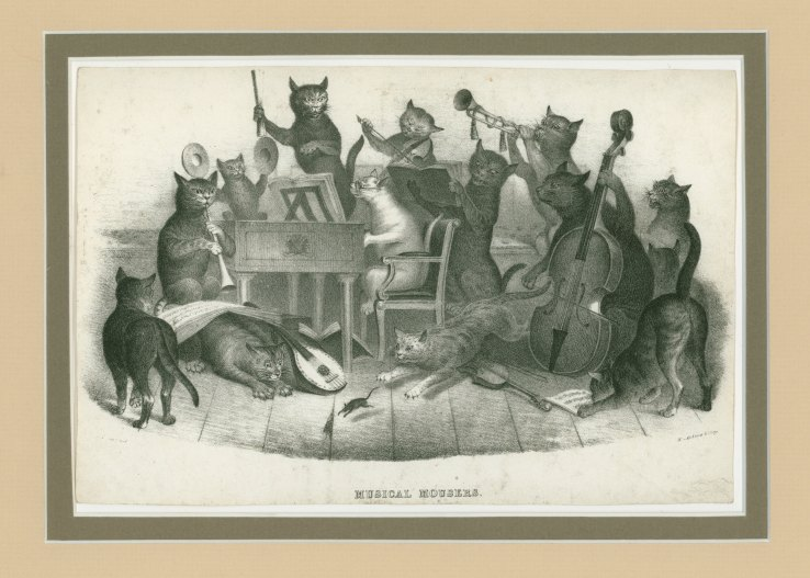 "Caricature - Cat Orchestra - ""Musical Mousers"". - (5693)"