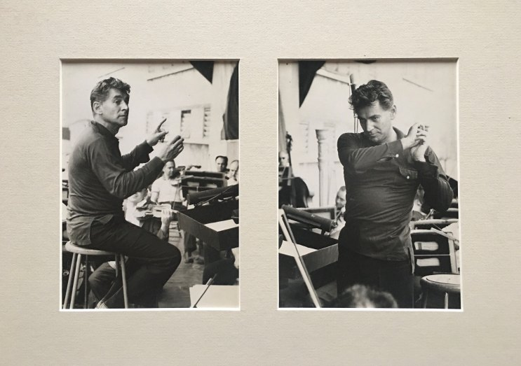 Bernstein, Leonard - Matted Original Fehl Photographs Of Bernstein Conducting. - (6851)